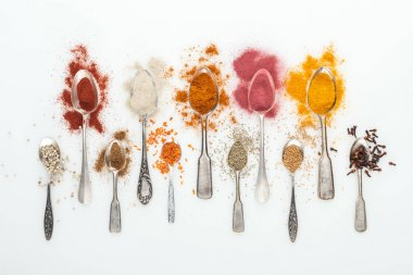 Top view of various bright spices in silver spoons on white background stock vector