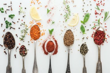 Top view of colorful spices in silver spoons near herbs and lemon slices on white background stock vector