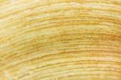zavření pohledu na žlutou texturou banánovou slupku