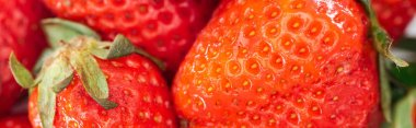 panoramic shot of fresh whole ripe red strawberries in pile
