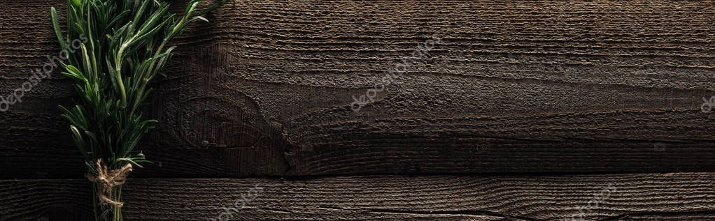 top view of green rosemary on wooden weathered table with copy space, panoramic shot