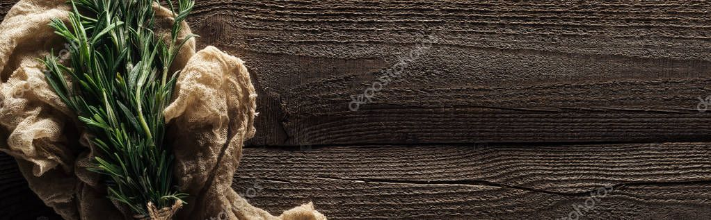 top view of green rosemary in rustic cloth on wooden weathered table with copy space, panoramic shot