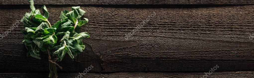 panoramic shot of green fresh mint on wooden rustic table