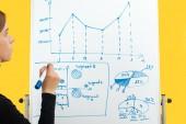 vágott kilátás üzletasszony rajz grafika és diagramok fehér flipchart