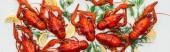 Panorama-Aufnahme von roten Hummern, Zitronenscheiben und grünen Kräutern auf weißem Hintergrund
