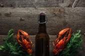 Draufsicht auf rote Hummer, Dill und Flasche mit Bier auf Holzoberfläche