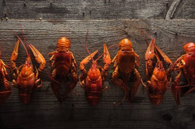 top view of red lobsters on wooden surface