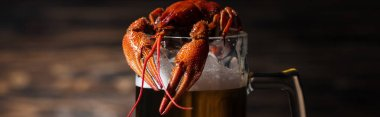 panoramic shot of red lobsters on glass with beer at wooden surface