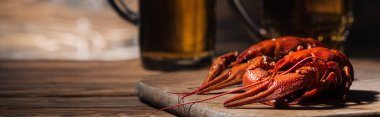 panoramic shot of red lobsters and glasses with beer on wooden surface