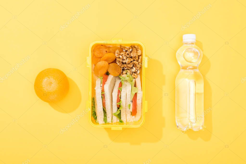Top view of lunch box with sandwiches, nuts, dried apricots near bottle with water and orange stock vector
