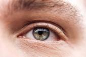 közelről kilátás felnőtt ember szeme szempillák és szemöldök néz el