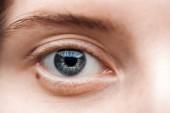 zblízka pohled mladé ženy modré oči s řasy a obočí