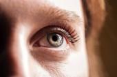 zblízka pohled na mladou ženu šedé oko s řasy a obočím, které hledí pryč