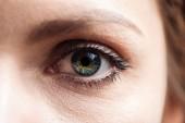 zblízka pohled na mladou ženu zelené oko s řasy a obočí, které se dívají na kameru