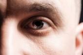 közelről tekintettel a felnőtt ember szeme szempillák és szemöldök nézett kamera