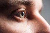 közelről kilátás felnőtt ember szeme néz el