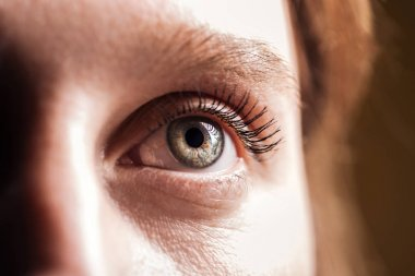 close up view of young woman grey eye with eyelashes and eyebrow looking away