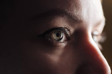 close up view of young woman eye with eyelashes and eyebrow looking away in dark