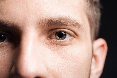Close up view of adult man eyes with eyelashes and eyebrows looking at camera stock vector