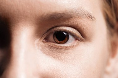 close up view of young woman brown eye looking at camera