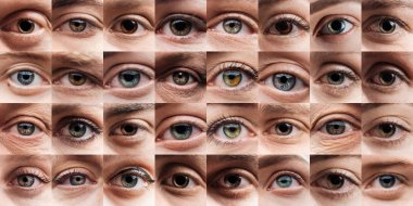 Collage with human beautiful eyes of different colors stock vector