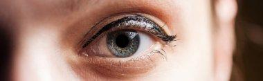 Close up view of woman blue eye looking at camera, panoramic shot stock vector