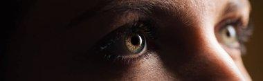 Close up view of human eye looking away in dark, panoramic shot stock vector