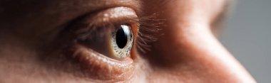Close up view of human eye looking away, panoramic shot stock vector