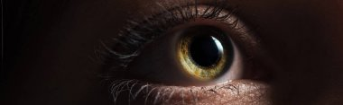 close up view of human bright eye looking away in dark, panoramic shot