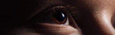 Close up view of human brown eye looking away in dark, panoramic shot stock vector