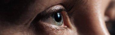 close up view of human eye looking away in dark, panoramic shot