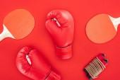 Ansicht von Boxhandschuhen in der Nähe von Tischtennisschlägern in der Nähe von Springseil isoliert auf rot