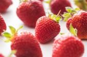 selektivní zaměření zralých a sladkých jahod na bílém pozadí