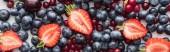 panoramatický výstřelky z červených, čerstvých a zralých brusinek, nakrájejte jahody a celé borůvky