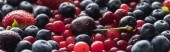 panoramic shot of fresh and ripe cherries with drops, blueberries, strawberry and cranberries