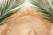 pohled na elegantní slaměný klobouk na zlatém písku se zelenými palmovými listy