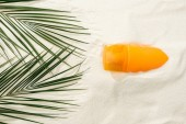 Fotografie top view of sunscreen and green palm leaves on golden sand