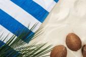 Fotografie zelené palmové listy, kokosové ořechy a pruhovaný ručník na písku