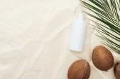 pohled na Palmový list, kokosové ořechy a produkt na ochranu proti slunečnímu záření na písku