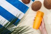 felülnézet a pálmalevél, kókuszdió és női kéz a fényvédő homokkal