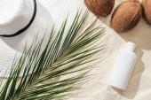 felülnézet a pálmalevél, fényvédő, kókuszdió és fehér Szalmakalapot a homok