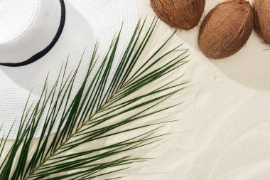 top view of coconuts, palm leaf and white straw hat on sand