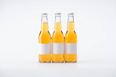Bottles of beer with white blank labels on white background stock vector