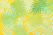felülnézet a papír vágott zöld trópusi levelek elszórtan sárga fényes háttér