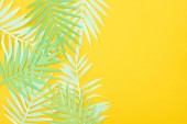 Photo top view of paper cut green tropical leaves on yellow bright background with copy space