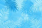 pohled na papírové listy na modrém minimalistickém pozadí