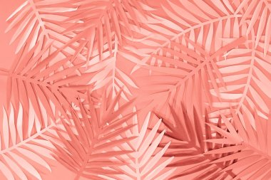 Top view of coral tropical paper cut palm leaves, minimalistic background stock vector