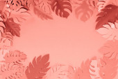 Fotografia telaio di carta tropicale di corallo tagliato foglie di palma, sfondo minimalista con spazio di copia