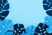 felülnézet a papír vágott trópusi levelek a kék minimalista háttér másolási tér