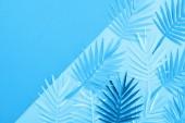 Fotografie pohled na papírové listy na modrém minimalistickém pozadí s prostorem pro kopírování